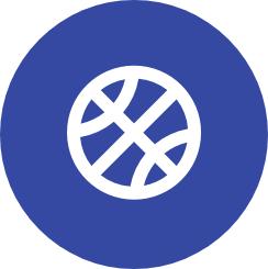 Basketball icon on blue circle background
