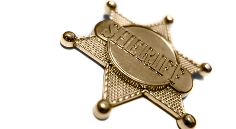 Former sheriff's lieutenant pleads guilty to felony theft