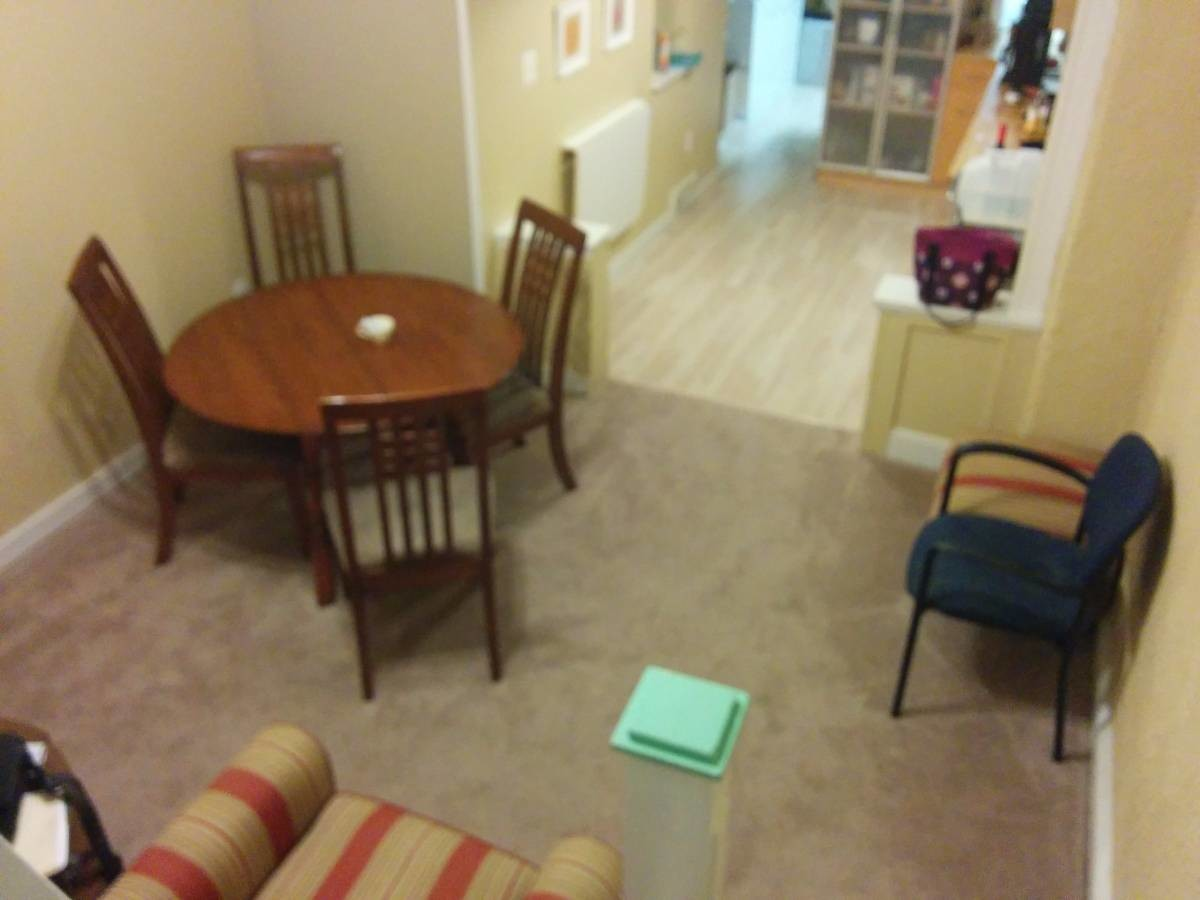 Co-ed houseshare in Hampden - All inclusive rent!
