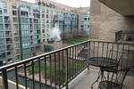 Share One Bedroom in Foggy Bottom