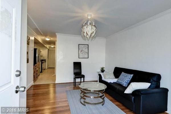 1 Bedroom APT Renovated
