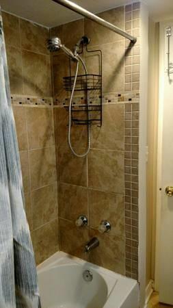$1975 / 2br – 875ft2 – Furnished 2bedroom 1bathroom English Basement Apartment free WiFi (Bloomingdale Ledroit Park)