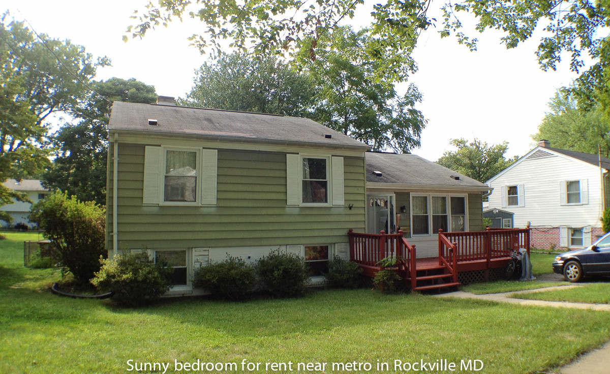 Basement For Rent In Rockville Md $1300 / 350ft2 - $1100 /1br semi-basement (350 sq.ft) for rent in