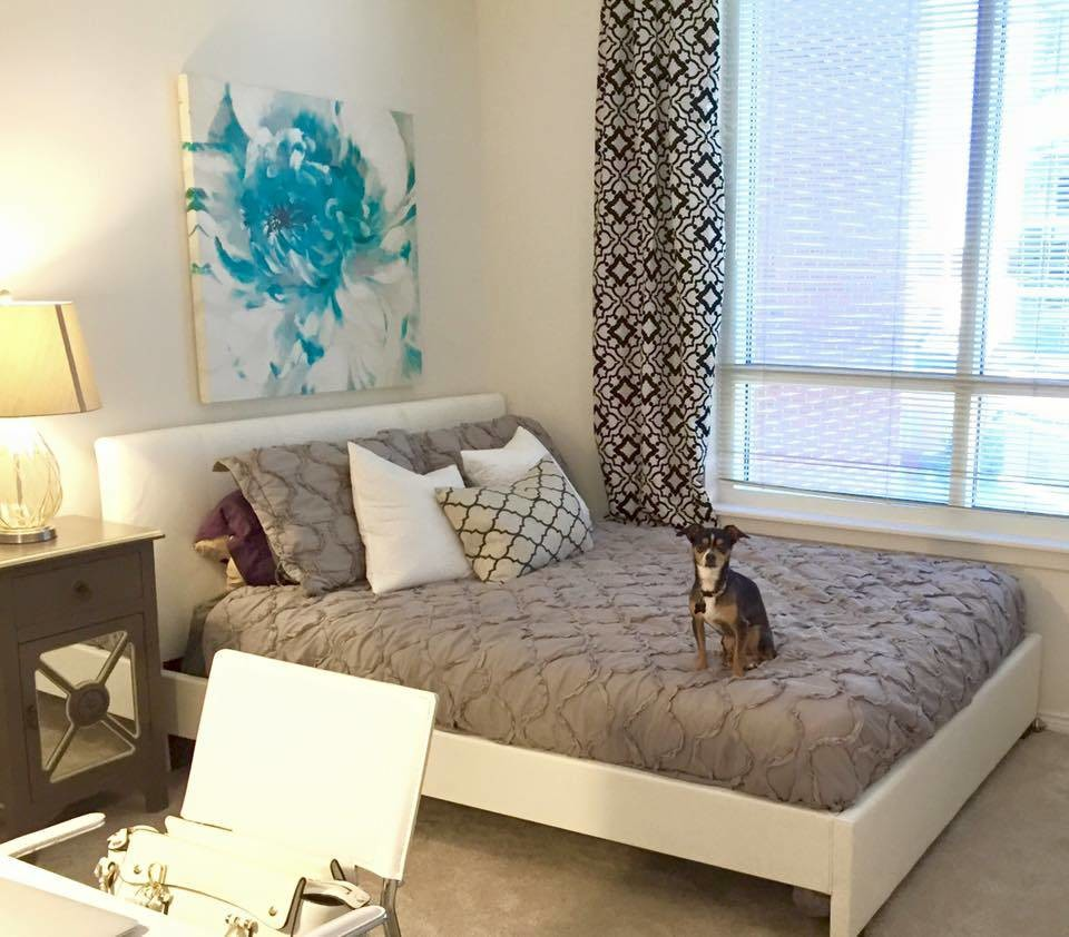 Furnished private bedroom/bath avail Summer Sublet May-Aug