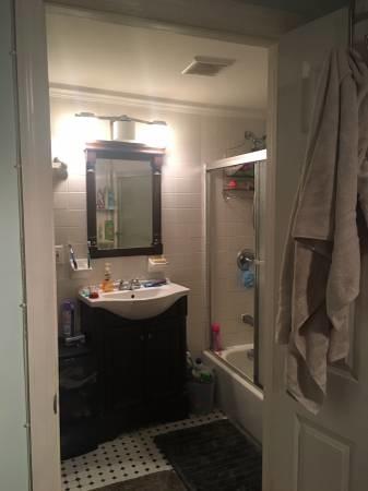 Room in Sunny Fort Greene 2BR