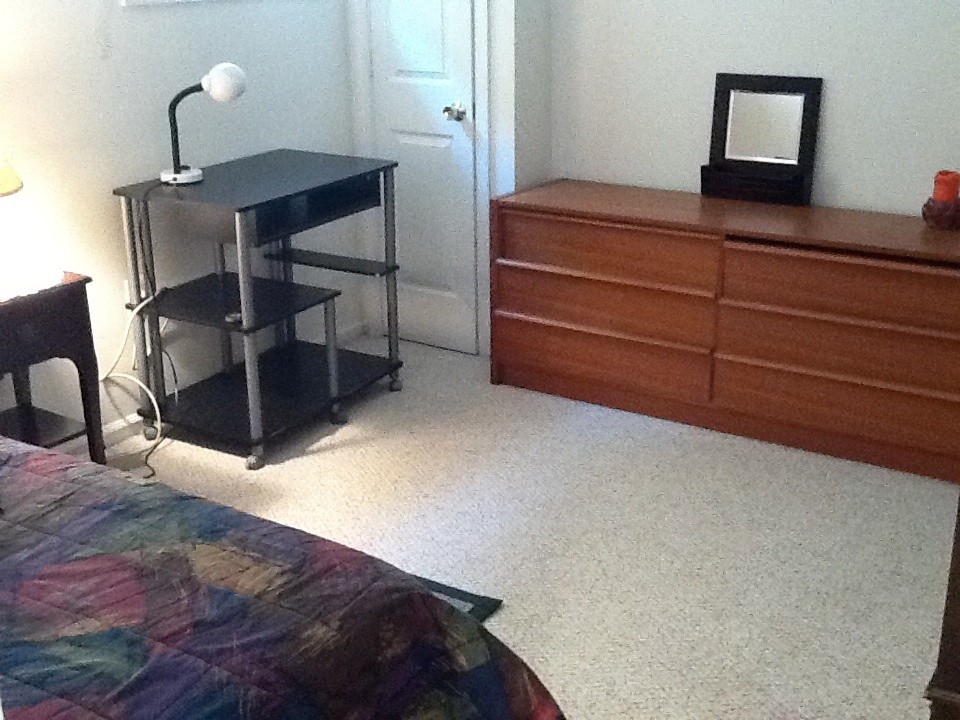 Nice Furnished Room Available