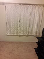 1 large bedroom/1 large den apartment