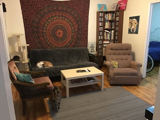 Adorable One bedroom 1 bath apartment in Church Ave Kensington and Parkville, Brooklyn