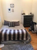 Subletting single Bedroom in a 2 bed Apt