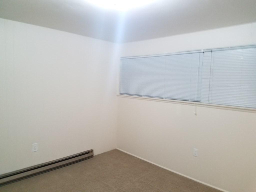 True 1 Bedroom in Shamrock Apartments #203