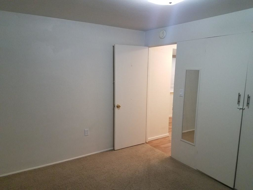 True 1 Bedroom in Shamrock Apartments #205