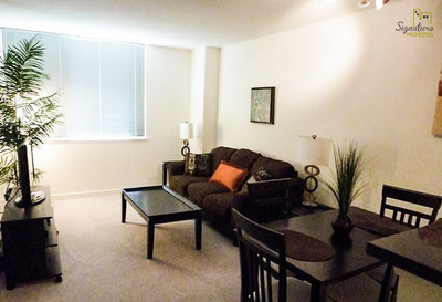 Beautiful one bedroom apartment  near Georgetown University School of Continuing Studies