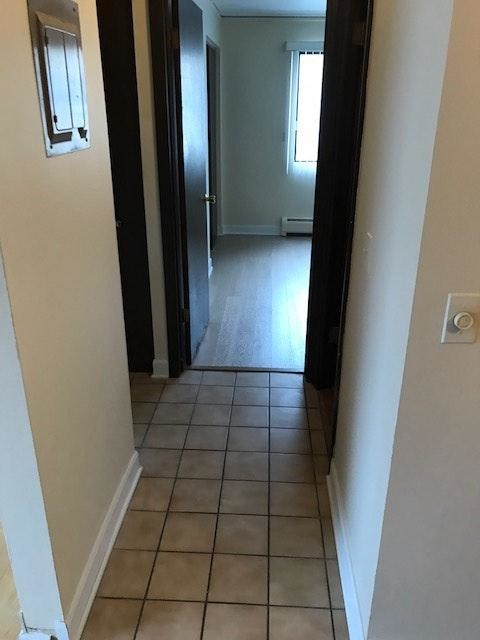 Room in a 3bd/1bath apt. Des Plaines downtown
