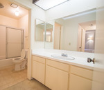 2 bd 2 bath shared room for rent at  Westwood Gallery
