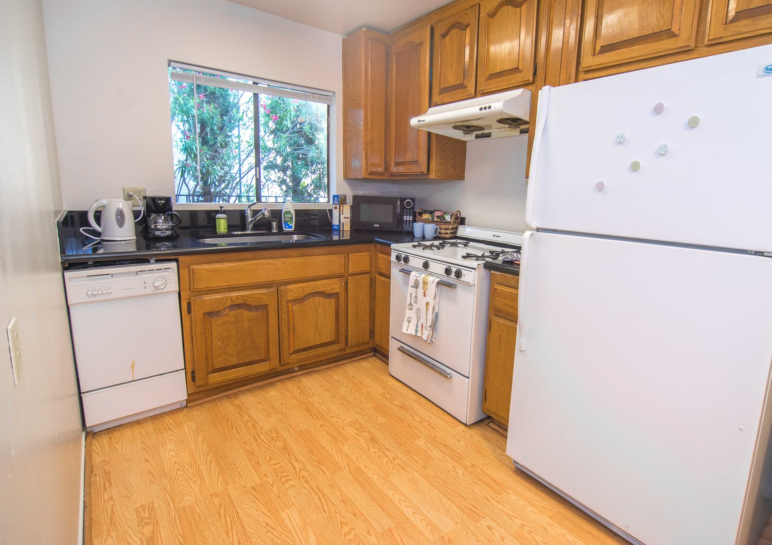 2 bd 2 bath shared room for rent at  Pelham Ave Apts