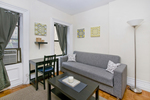 (Perfect Sublet #1008) Furnished 1BR + Sofa bed