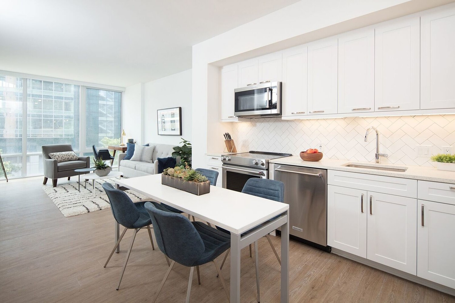 Brand New, Luxury Furnished Apartments (1 Bed, 1 Bath) (Blocks from Union Station)