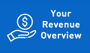Your Revenue Overview