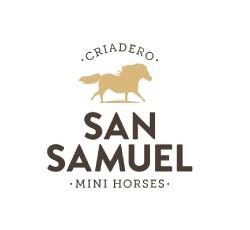 San Samuel