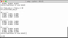 Cast a pytorch tensor to another type 280x158
