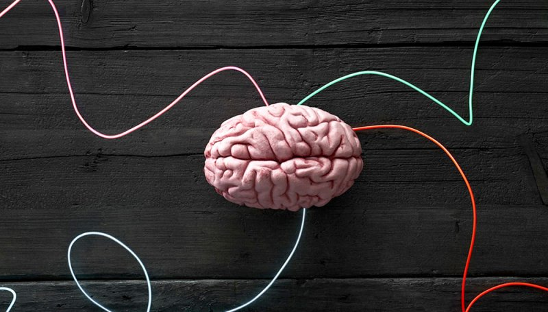 Similar Changes In Brains Of Patients >> Albilad Scientists Train Brains To Change Strength Them In Under