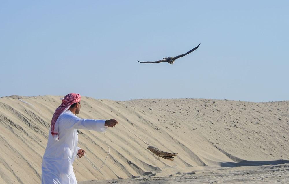 ناصر بن حمد: الإثارة ستكون حاضرة والبطولة مكسب للملاك والصقارين