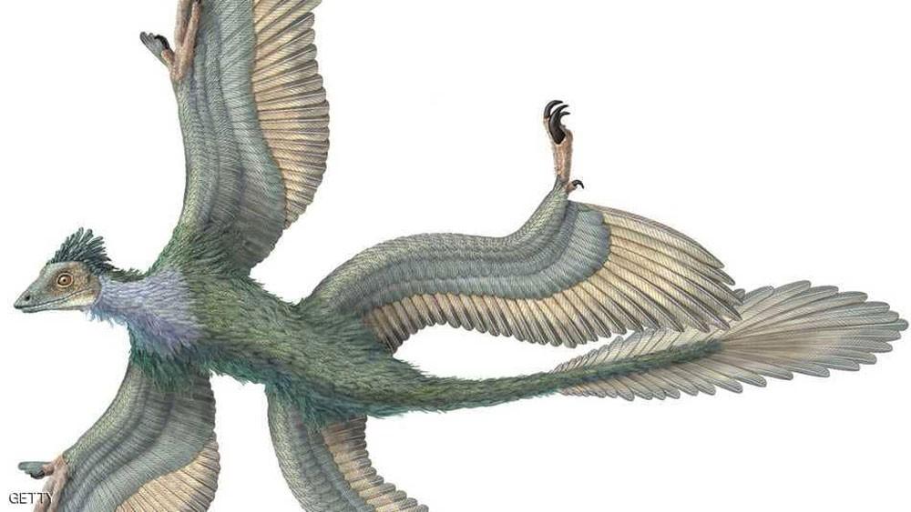 اكتشاف ديناصور بريش ملون