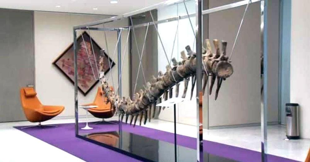 ذيل ديناصور للبيع في مزاد لصالح مشروع خيري