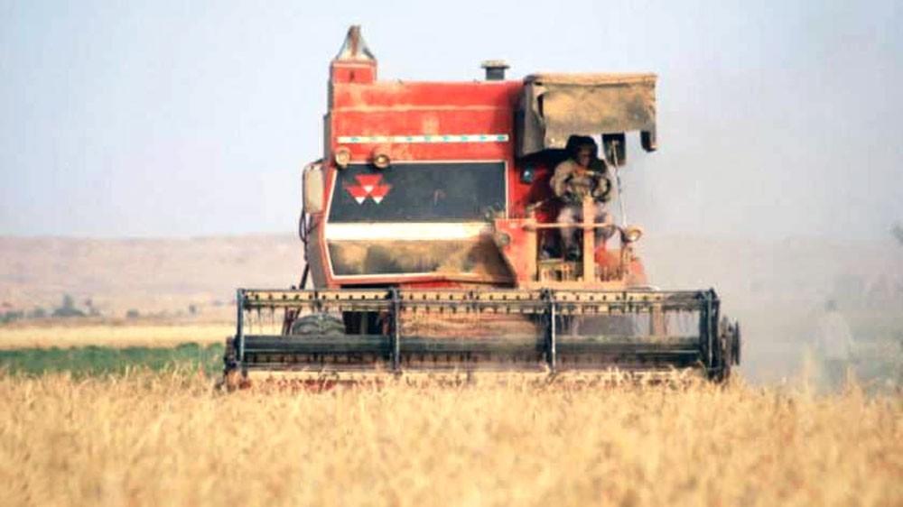 الجفاف يزيد واردات العراق من الحبوب