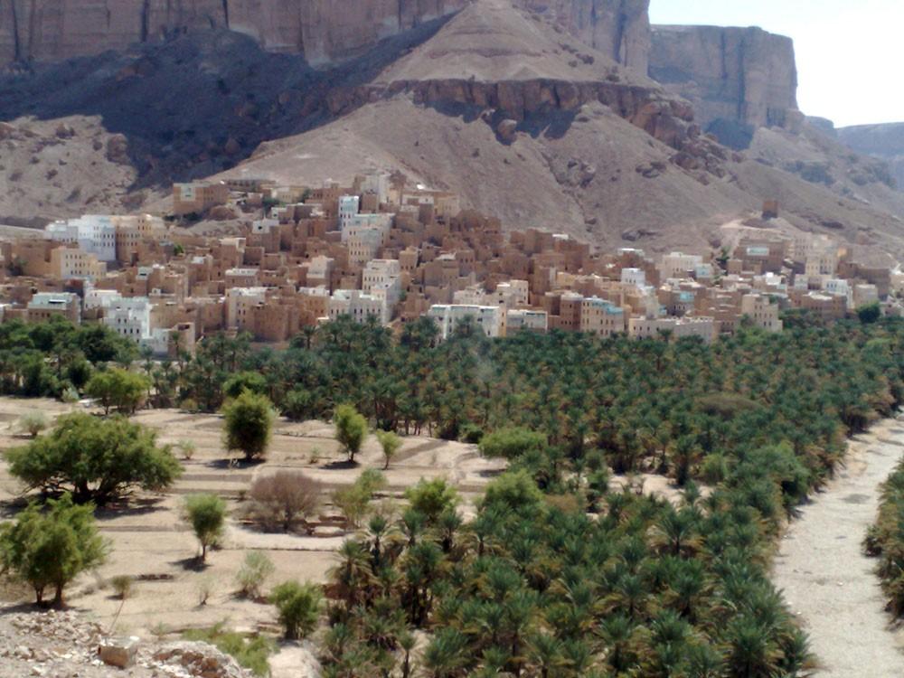 """اليمن.. بدء """"عملية الفيصل"""" بدعم إماراتي"""