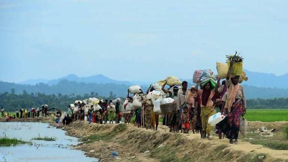 """الأمم المتحدة: وحش فيسبوك ساهم في """"جرائم ميانمار"""""""