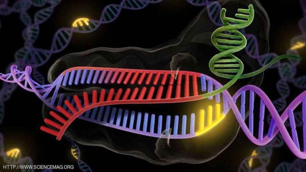 للمرة الأولى .. تعديل الجينات البشرية