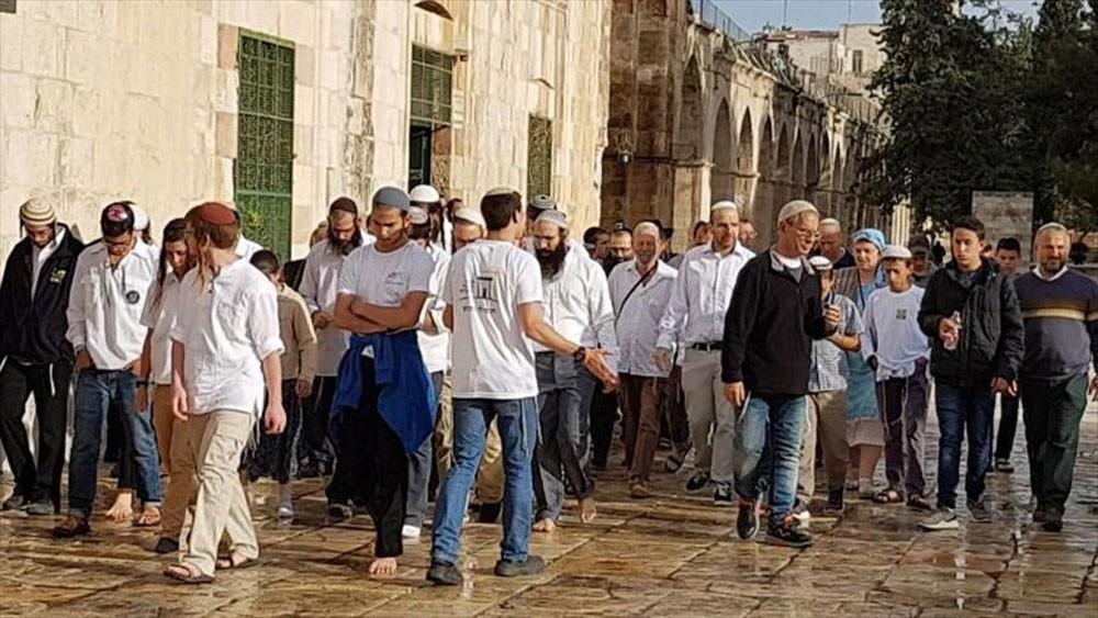 عدد المستوطنين المقتحمين للمسجد الأقصى اليوم هو الأكبر منذ عام 1967