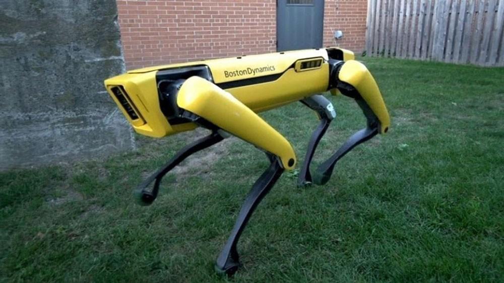 شاهد هذا الروبوت الذكي كيف يسلك طريقه بسلام ودقة