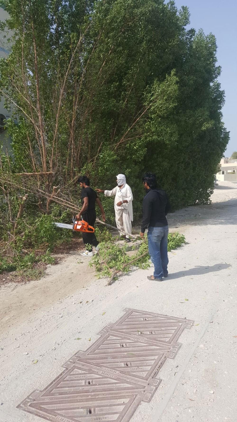 بلدية الشمالية: إزالة ٢٥ شجرة تخفي مخالفات بناء في مدينة حمد