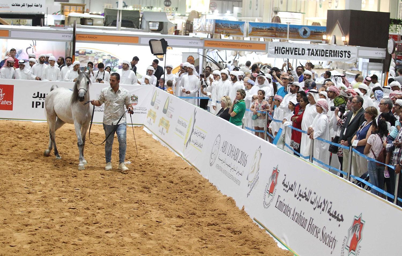 """الإمارات تحتفي بـ """"زايد"""" في معرض أبوظبي الدولي للصيد والفروسية 2018"""