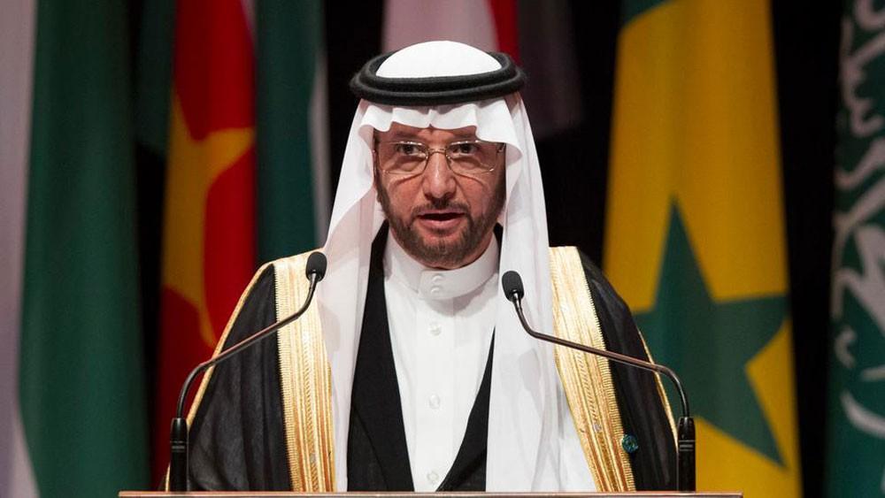 """""""التعاون الإسلامي"""" تطالب بحماية الملاحة في البحر الأحمر"""