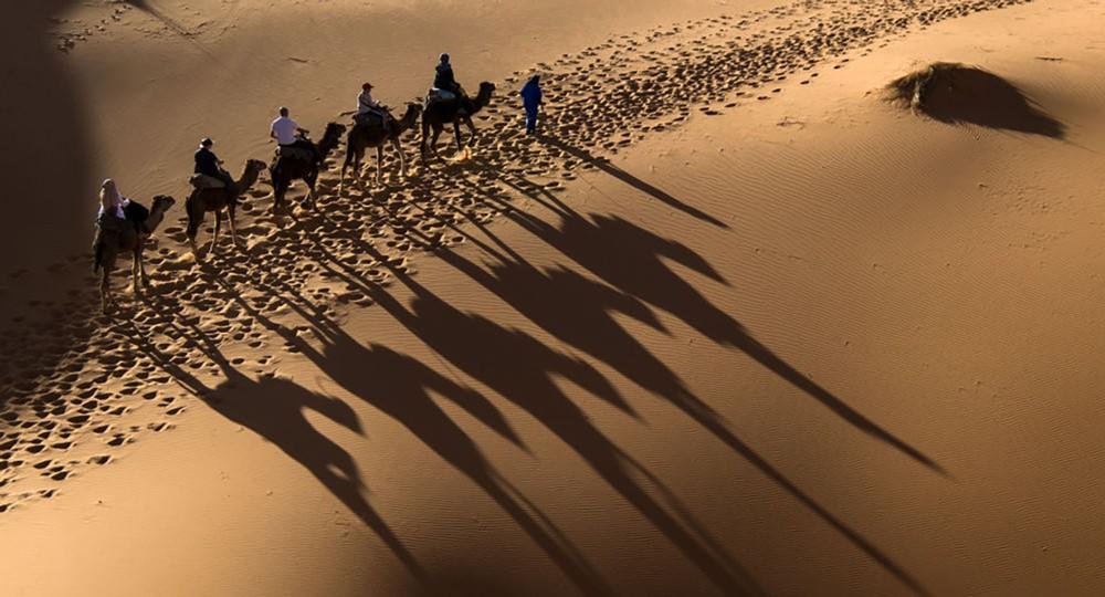 علماء يحولون الصحراء إلى محطة طاقة عملاقة