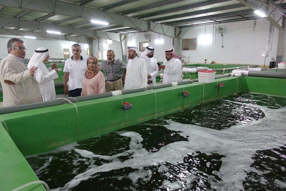 """وكيل """"الزراعة"""" : استثمار القطاع الخاص في الاستزراع السمكي يساهم في حماية البيئة البحرية"""