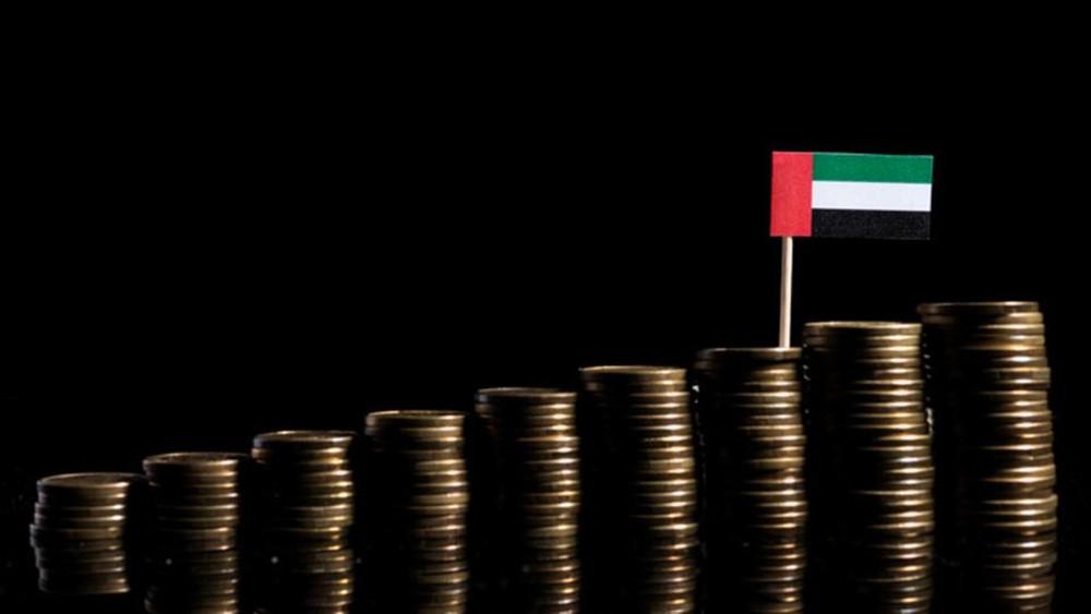 الإمارات.. الاستثمار الأجنبي سينمو 20% بـ2019