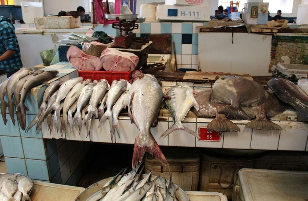 """""""الثروة السمكية"""" : مصادرة 2000 كغم من الأسماك الصغيرة والتالفة"""