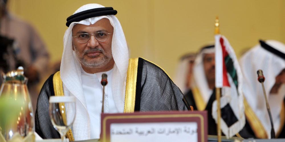 قرقاش: مجلس التعاون الخليجي مستمر رغم أزمة قطر