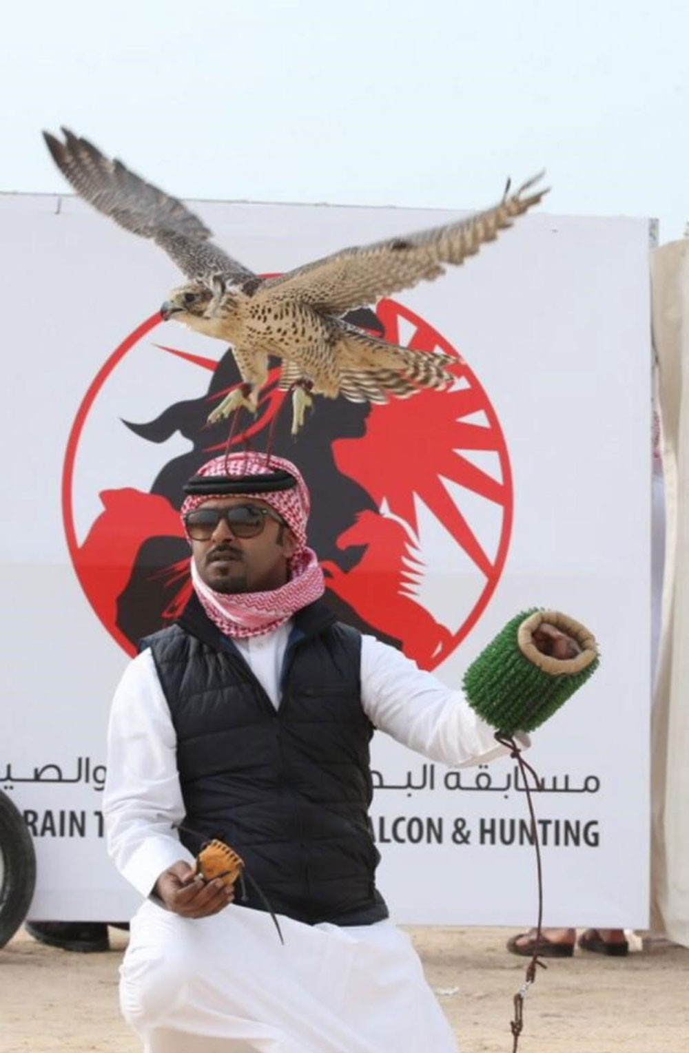 """صقار بحريني يتألق في بطولات """"فزاع"""" ويحقق المركز الثالث"""