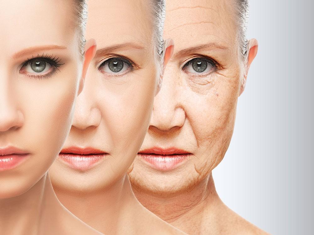 دراسة : الشيخوخة تبدأ مع سن الشباب ولا تتوقف أبدا