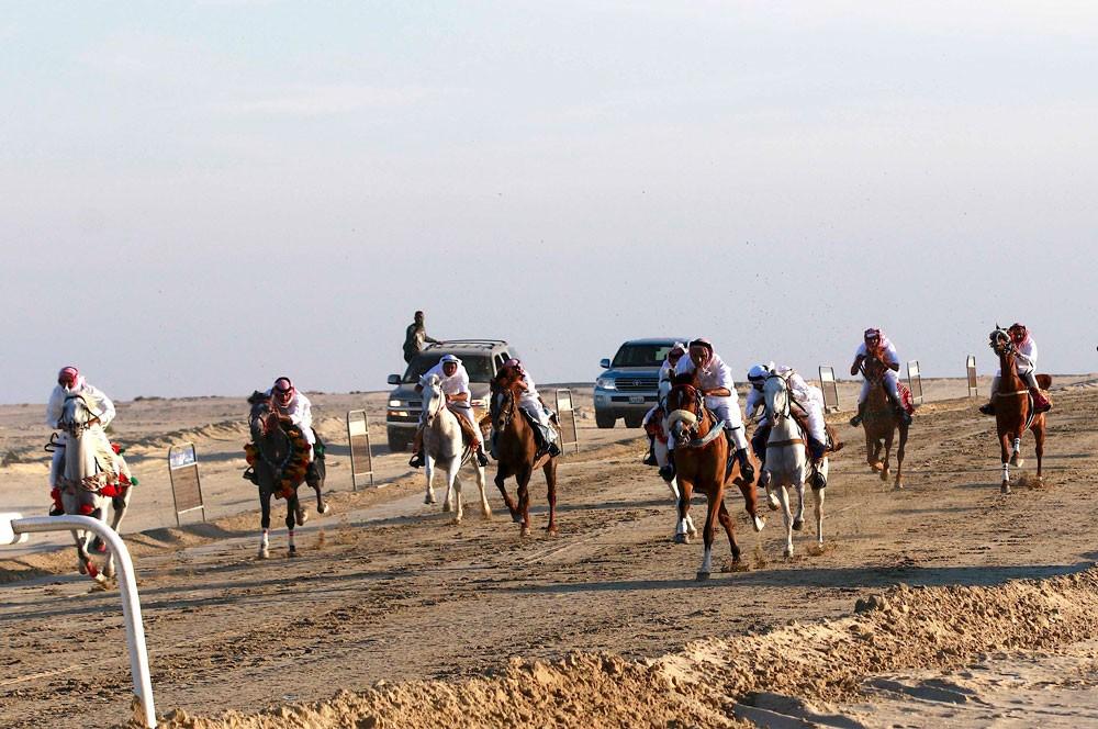 لجنة الموروث تقيم سباق الخيل العربي ومزاين للإبل