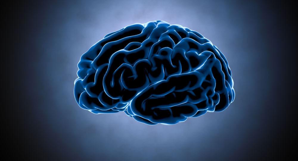 العلماء يجدون علاقة غير عادية بين السمنة وضمور الدماغ