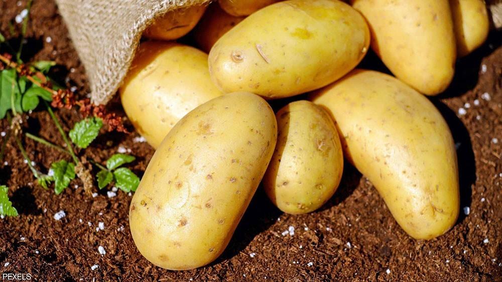 """تحذير.. البطاطس """"قد تختفي"""" من الأسواق"""