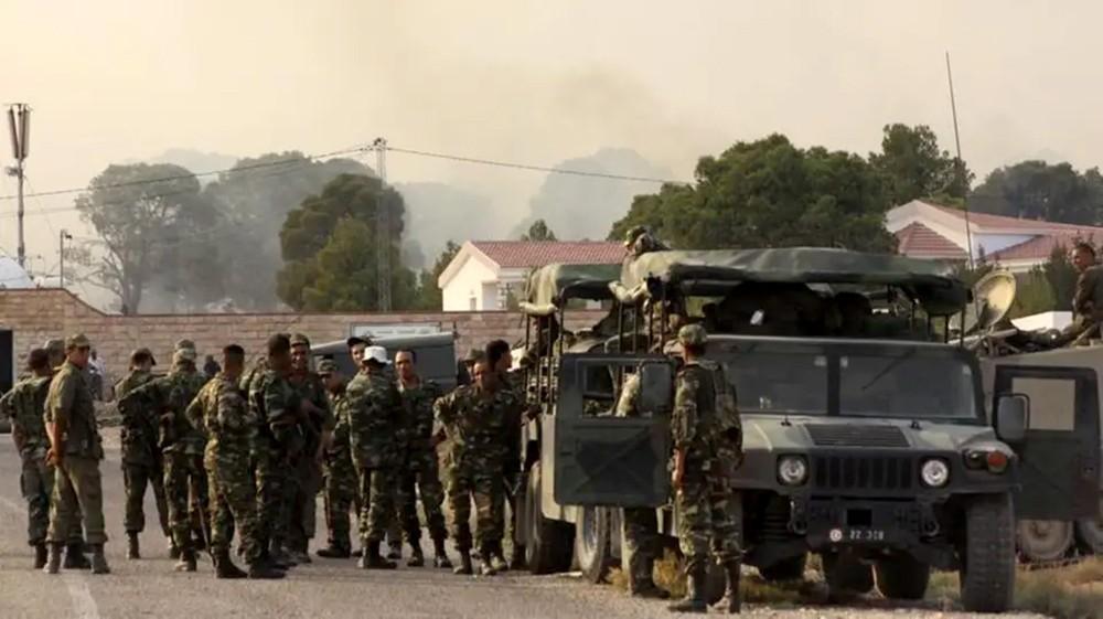 اشتباكات قرب الحدود التونسية الجزائرية.. ومقتل 3 دواعش