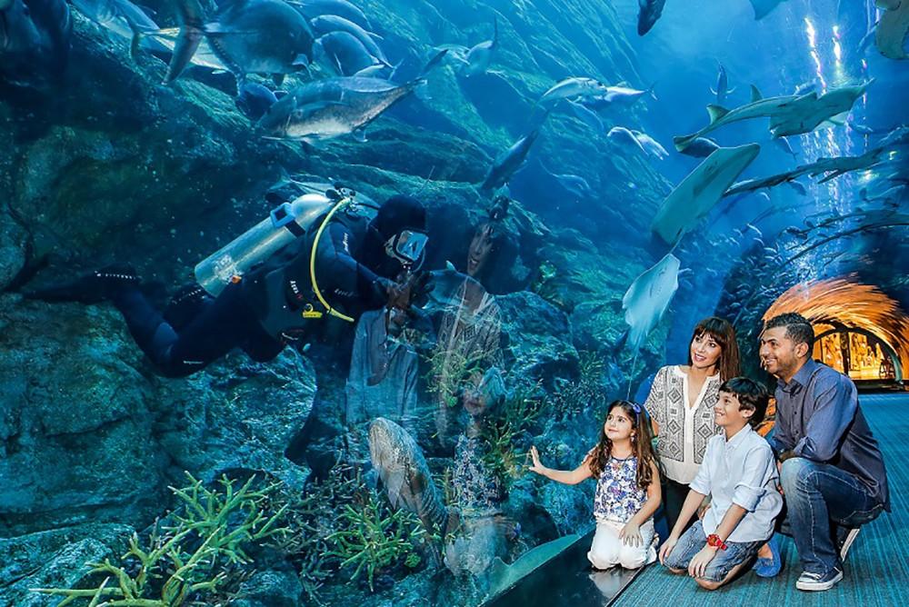 """""""دبي أكواريوم وحديقة الحيوانات المائية"""" يحتل المرتبة الأولى في الشرق الأوسط وشمال أفريقيا"""