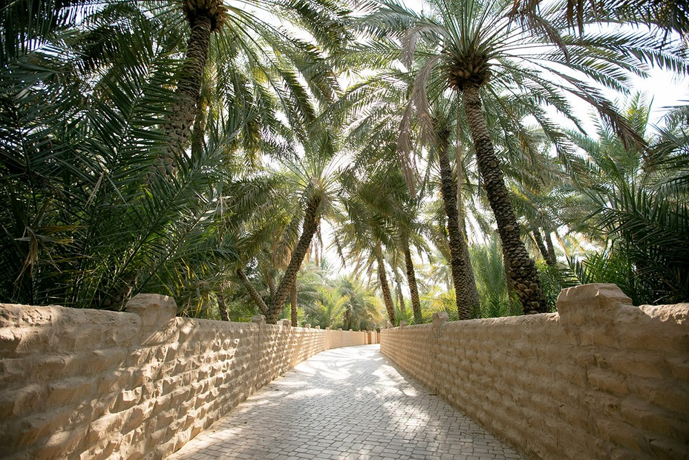 الثقافة والسياحة – أبوظبي تنظم فعاليات ثقافية في أبريل